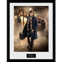 Fantastic Beasts Group Stand Collector Print
