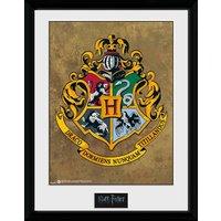 Harry Potter Hogwarts Framed Collector Print