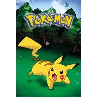 Pokemon Pikachu Catch Maxi Poster - Pokemon Gifts
