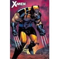 X-Men Wolverine Berserker Rage Maxi Poster - Wolverine Gifts