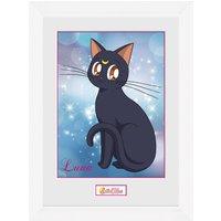 Sailor Moon Luna Collector Print