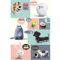 Secret Life of Pets Boxes Maxi Poster