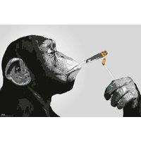 Steez Smoking Maxi Poster - Smoking Gifts