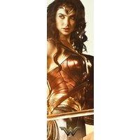 Wonder Woman Sword Door Poster - Woman Gifts