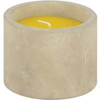Click to view product details and reviews for Citronella Candle Pot Ff255.