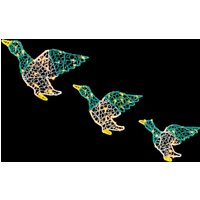 Click to view product details and reviews for Set Of 3 Colour Acrylic Ducks.