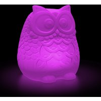 Click to view product details and reviews for Large Solar Owl Colour Change R C Moodlight.