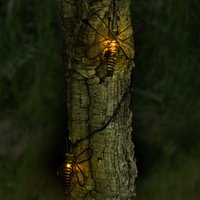 Click to view product details and reviews for Solar Metal Dragonfly Lights.