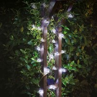 Click to view product details and reviews for Solar Powered 25 Orb Fairy Lights.