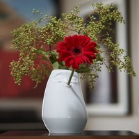 Click to view product details and reviews for Tassen Laid Back Vase.