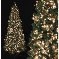 Click to view product details and reviews for 750 Warm White Treebrights With Timer.