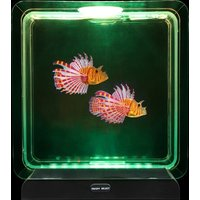 Click to view product details and reviews for Lion Fish Tropical Mood Light.