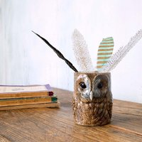 Tawny Owl Pencil Pot