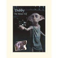 Harry Potter (Dobby) 30X40Cm Mounted Print