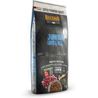 12,5 kg | Belcando | Junior Lamb and Rice Super Premium | Trockenfutter | Hund