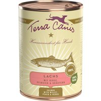 24 x 400 g | Terra Canis | Lachs mit Hirse, Pfirsich & Kräutern Classic | Nassfutter | Hund