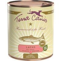 12 x 800 g | Terra Canis | Lachs mit Hirse, Pfirsich & Kräutern Classic | Nassfutter | Hund