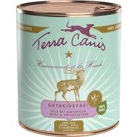 12 x 800 g | Terra Canis | Wild mit Kartoffeln, Apfel & Preiselbeeren Getreidefrei | Nassfutter | Hund