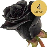 4 Black (Dyed) Roses