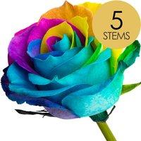5 Happy Rainbow Roses