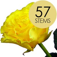 57 Yellow Roses