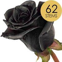 62 Black (Dyed) Roses