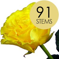91 Yellow Roses