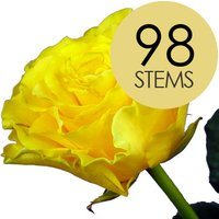 98 Yellow Roses