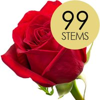 99 Bright Red Freedom Roses