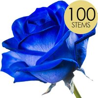 100 Blue (Dyed) Roses