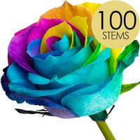 100 Happy Rainbow Roses