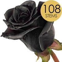 108 Wholesale Black (Dyed) Roses