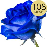 108 Wholesale Blue Roses
