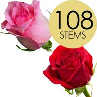 108 Wholesale Red and Pink Roses
