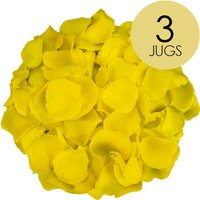3 Jugs of Yellow Rose Petals