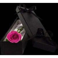 Luxury Pink Rose