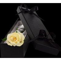 Luxury White Rose