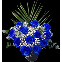 12 Letterbox Blue Roses
