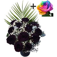 A single Happy Rainbow Rose surrounded by 11 Black Roses