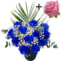 A single Pink Rose surrounded by 11 Blue Roses