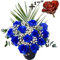 A single 17Inch Gold Trimmed Red Rose surrounded by 11 Blue Roses