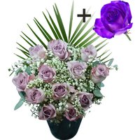 A single Purple Rose surrounded by 11 Lilac Roses
