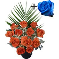 A single Blue Rose surrounded by 11 Orange Roses
