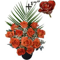 A single 17Inch Gold Trimmed Red Rose surrounded by 11 Orange Roses