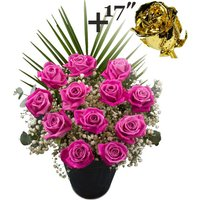 A single 17Inch Gold Dipped Rose surrounded by 11 Pink Roses