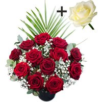 A single White Rose surrounded by 11 Deep Red Naomi Roses