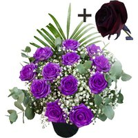 A single Black Rose surrounded by 11 Purple Roses