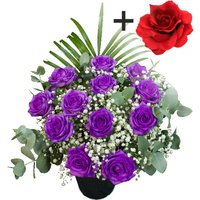A single Red Silk Rose surrounded by 11 Purple Roses