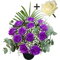 A single White Rose surrounded by 11 Purple Roses
