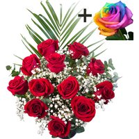 A single Happy Rainbow Rose surrounded by 11 Bright Red Freedom Roses